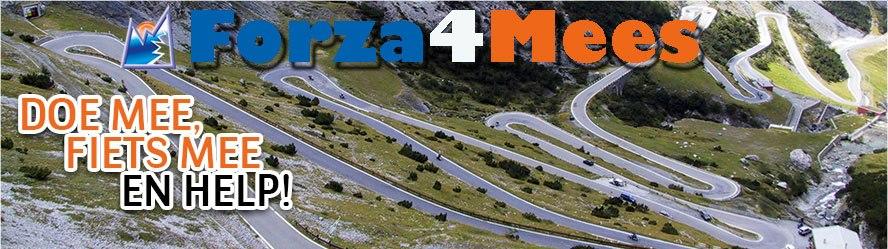 Facebook Forza4Mees